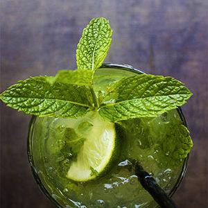 Alkoholfreier Mojito mit Aloe Vera